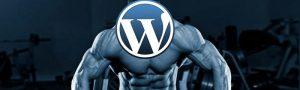 12 plugins WordPress essentiels pour les développeurs